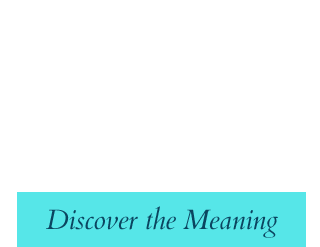 Blosophy: discover the meaning